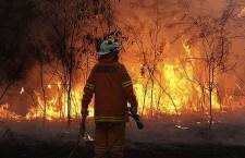 40C heatwave hits Australia