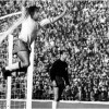 1962 FIFA World Cup: Two in a row for Brazil