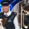 BGT Winners Con Watchers