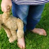 How The Teddy Bear Got Its Name