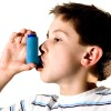 Dogs help asthma sufferers!