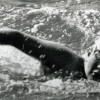 The 11-year-old who swam the English Channel