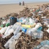 Litter on beaches and in our seas