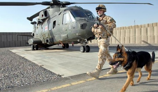 RAF police dogs on full alert